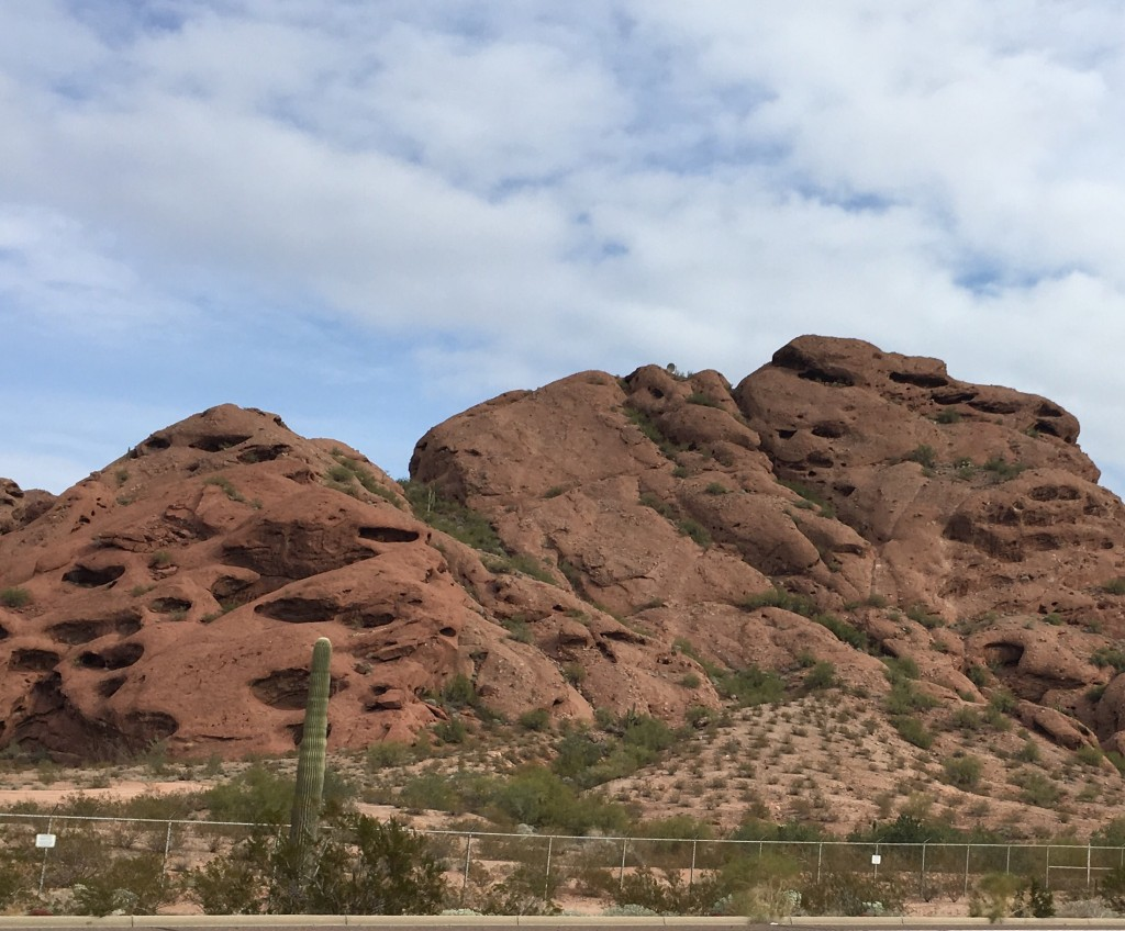Papago Park overlooking Desert Botanical Garden