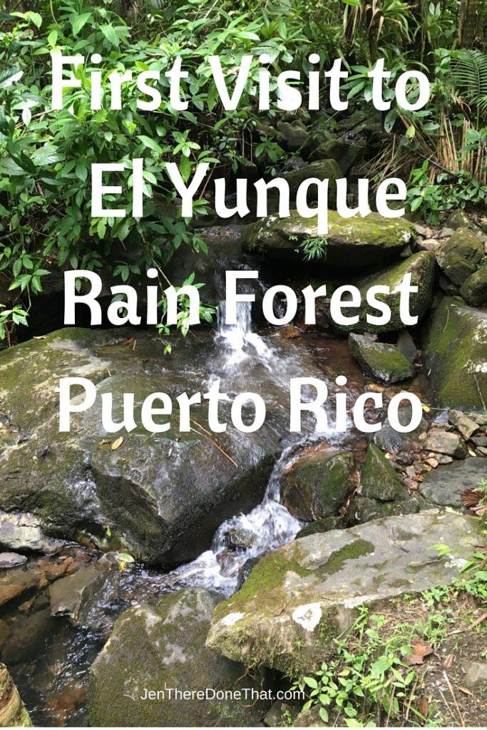First Visit El Yunque