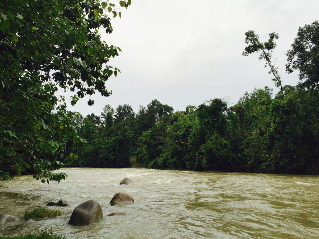Tamz_Rafting