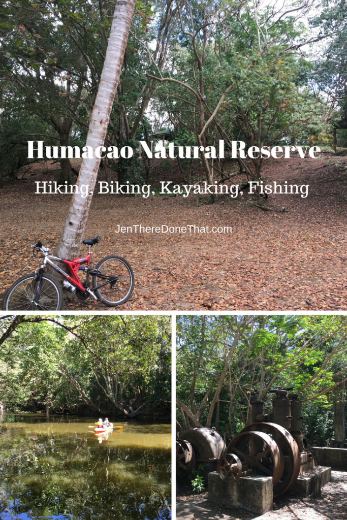 Humacao Natural Reserve Puerto Rico Activities