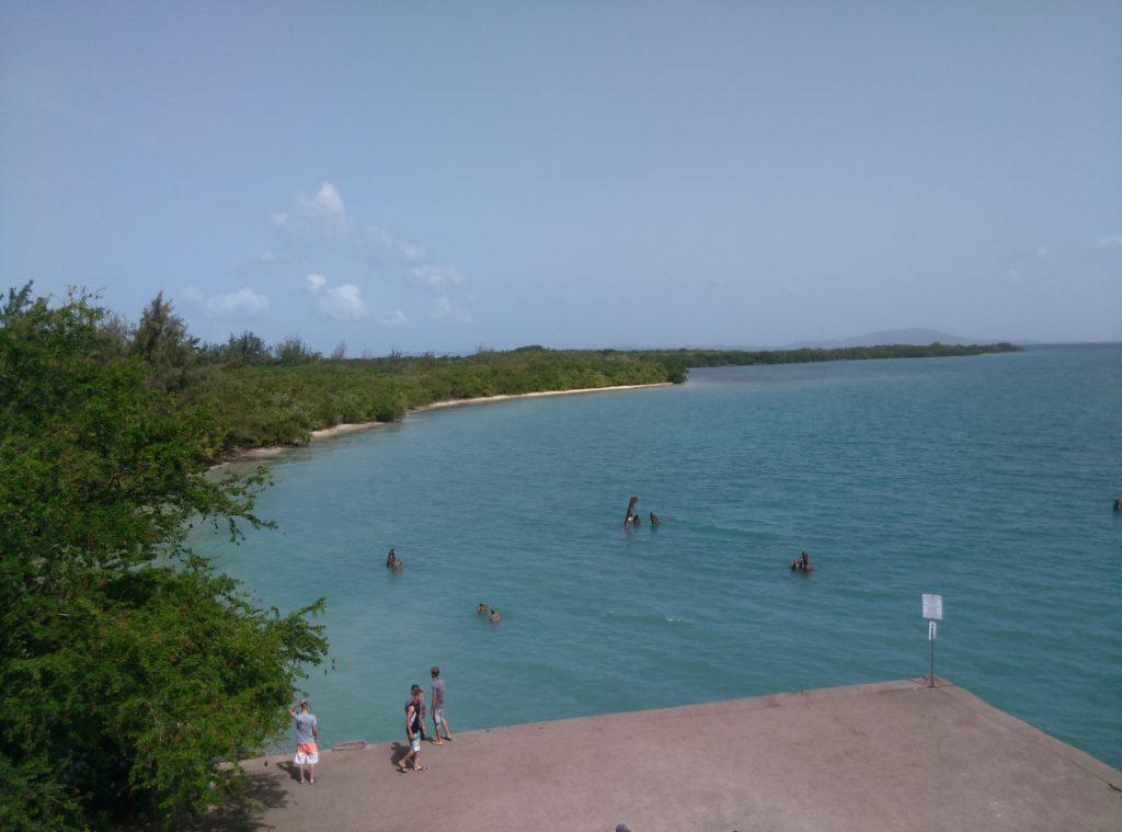 Ceiba Roosevelt Pier