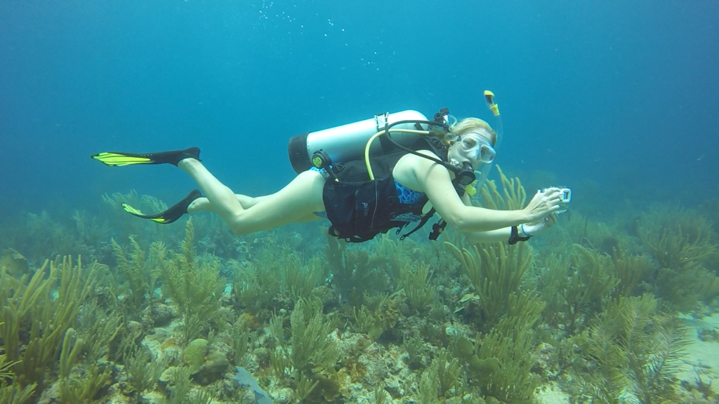 Jentheredonethat Underwater Jen There Done That
