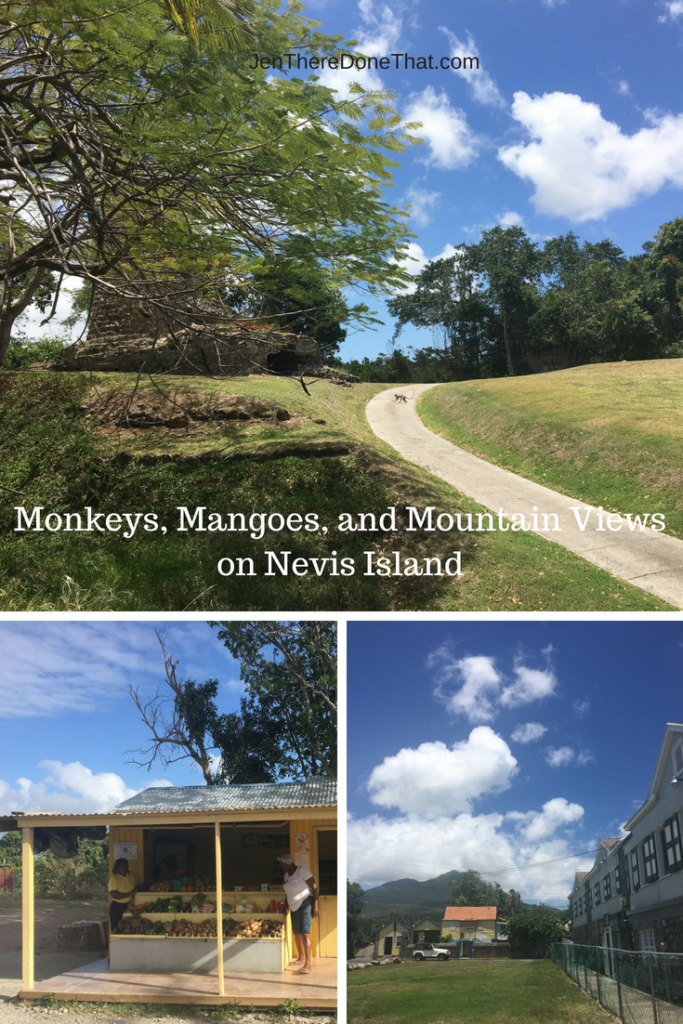 Monkeys, Mangoes, and Mountain Views on Nevis Island