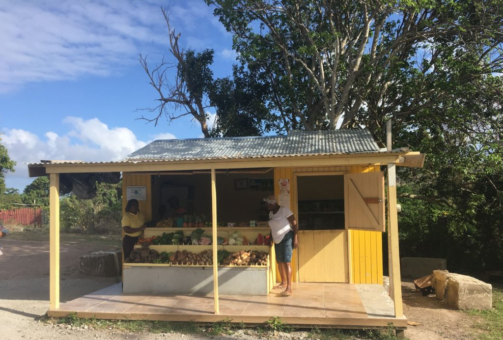Nevis Island Fruit Stand