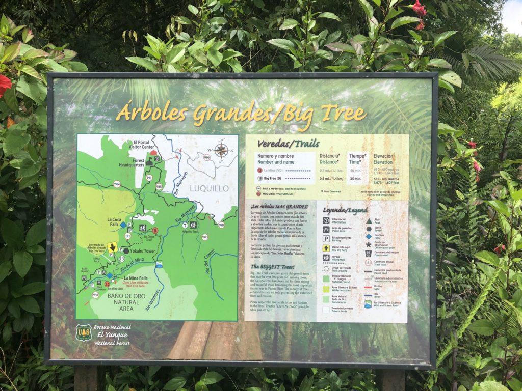 Big Tree hiking trail to La Mina falls is currently closed