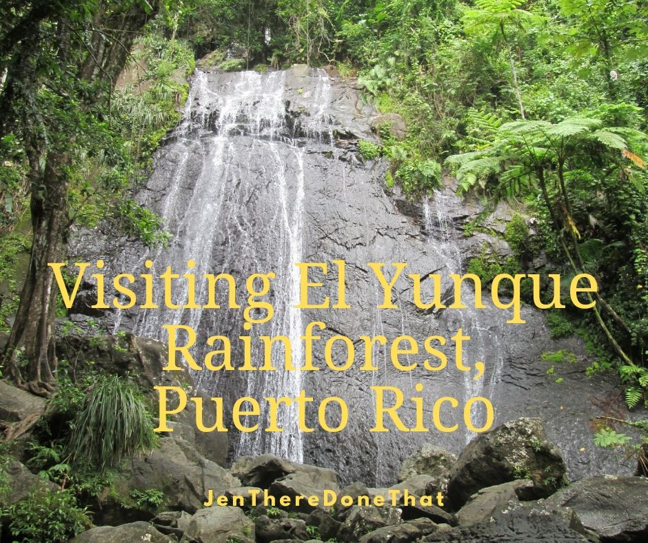 First Visit to El Yunque Rainforest | Hiking La Mina Falls | Travel Puerto Rico